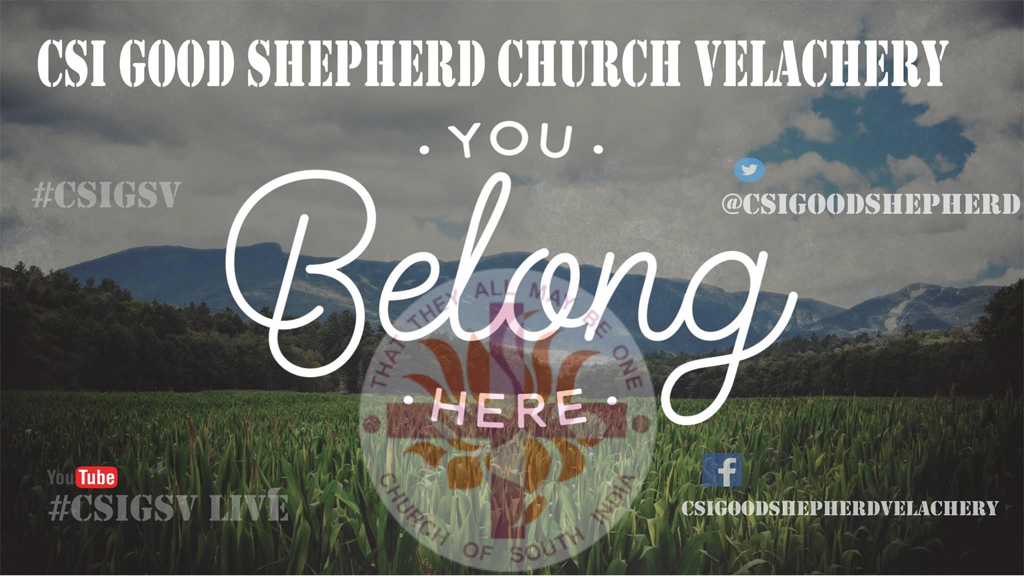 Belong_here